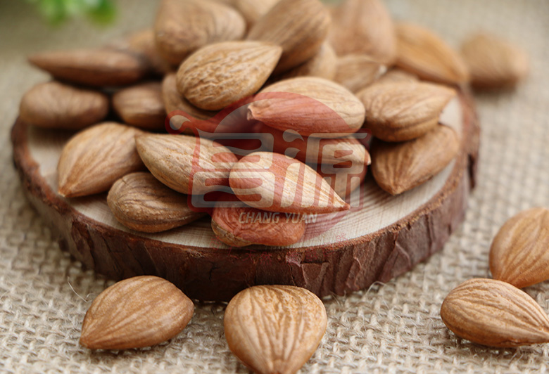 Raw Youyi Sweet Apricot Kernels /Seeds